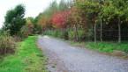 Chemin colline