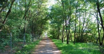 Chemin du parapente